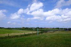 Palen in noordelijke richting vanaf de waddendijk